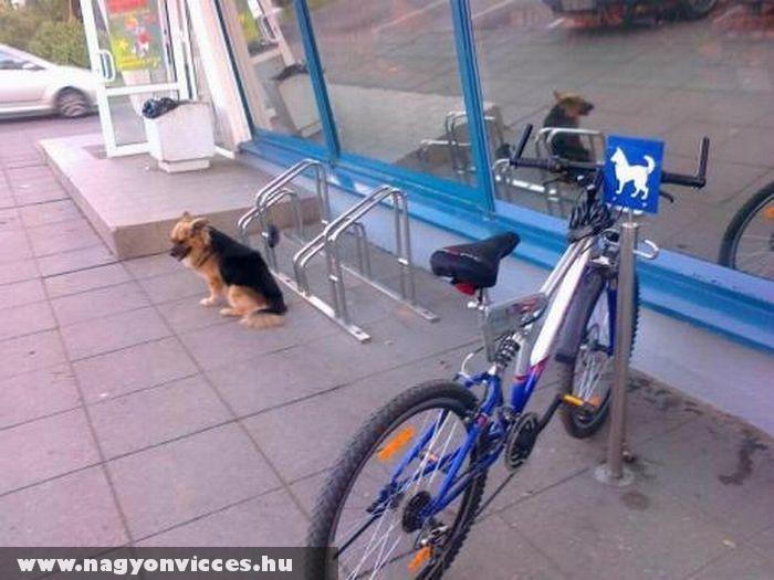 Rossz helyen a bicikli
