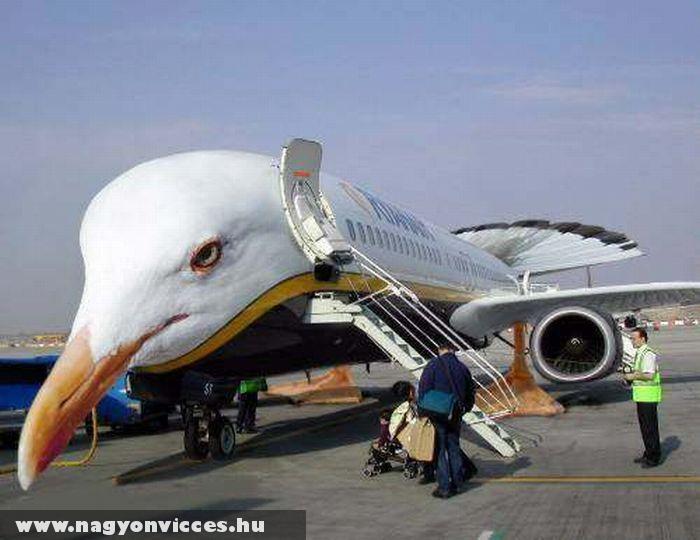 Stílusos repülõ