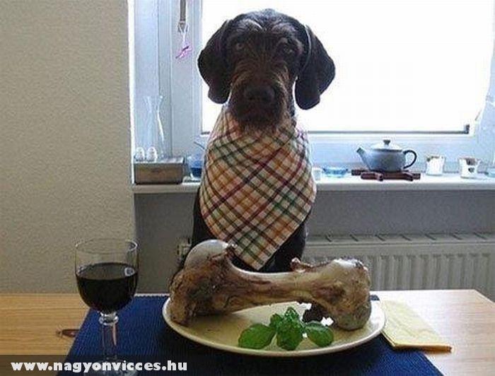 Jó étvágyat!