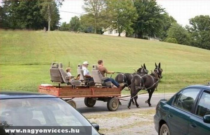 Extrával felszerelt lovaskocsi