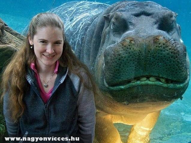 Akváriumnál