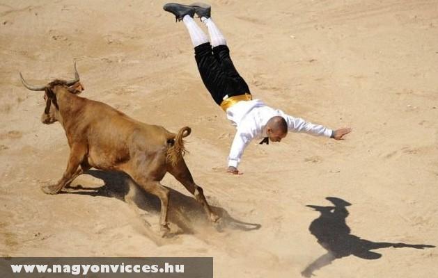 Ma a bika gyõz