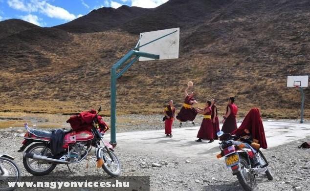 Kosarazó Shaolin szerzetesek