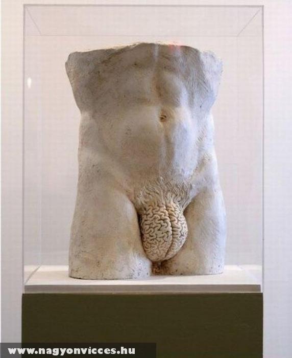 A férfi agy