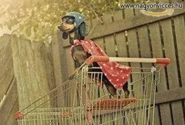 Boldog Új Évet Kíván a bevásárló Szuperkutya :)