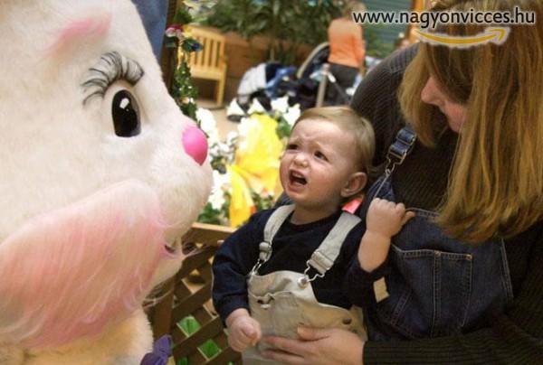 Húsvéti Nyuszi perspektíva