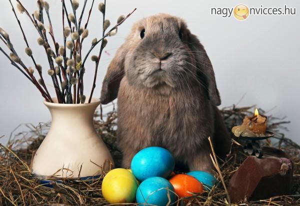 Húsvéti Ünnep, Boldog Ünnepeket!