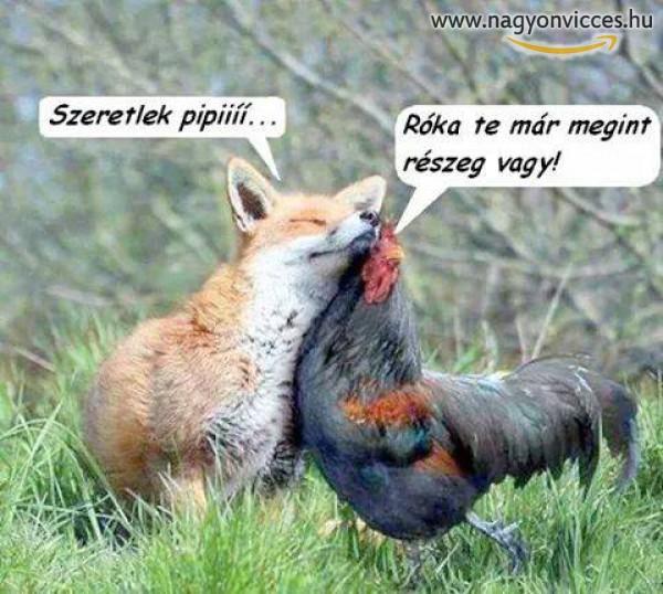 Szeretlek Pipi :D