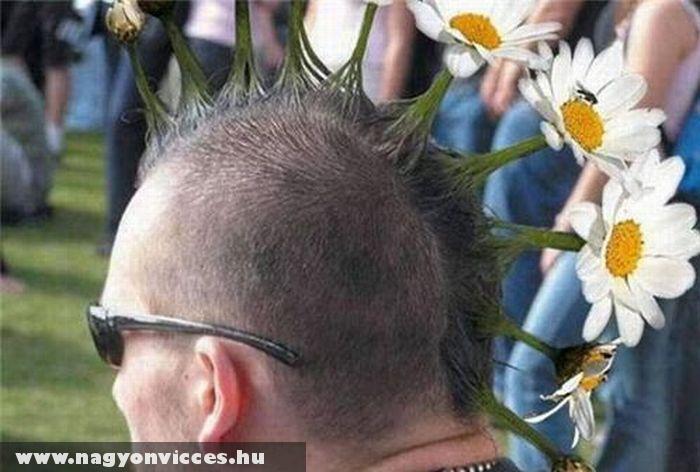 Virág kedvelõ punk