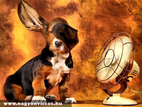 Ventilátor !