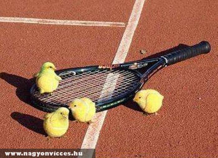 Élõ teniszlabdák