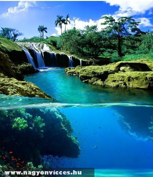 A víz világa