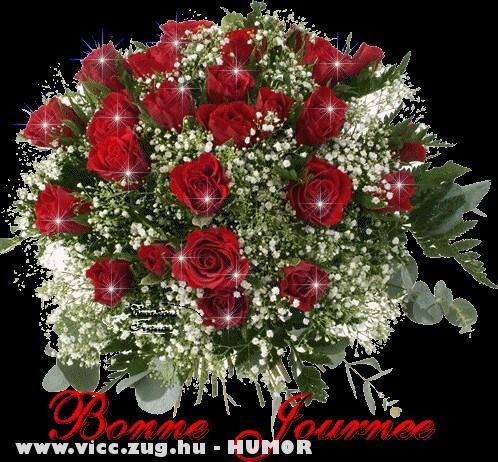 Gyönyörû rózsák