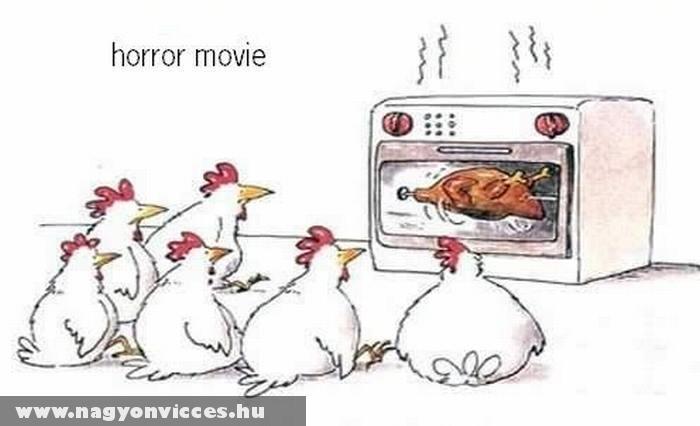 Horrorfilm baromfiknak