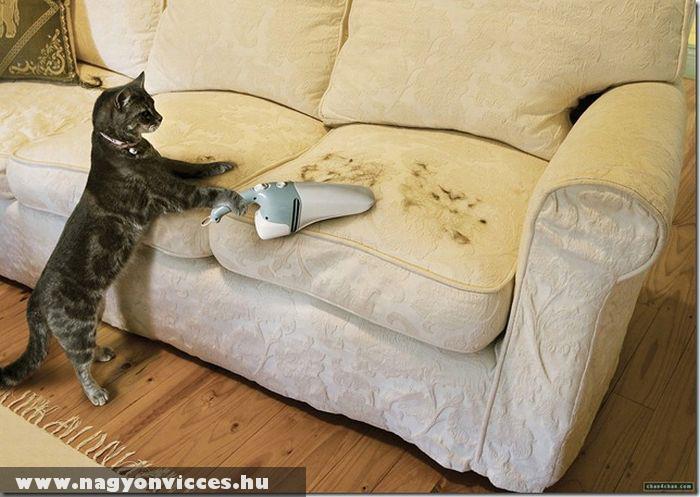 A macskaszõr takarító :)