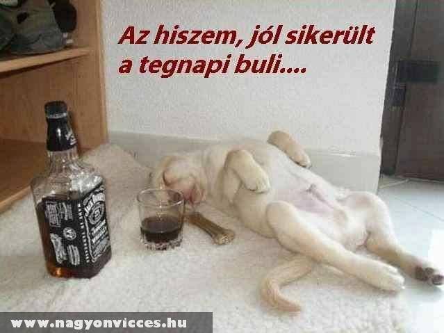 jó buli :)