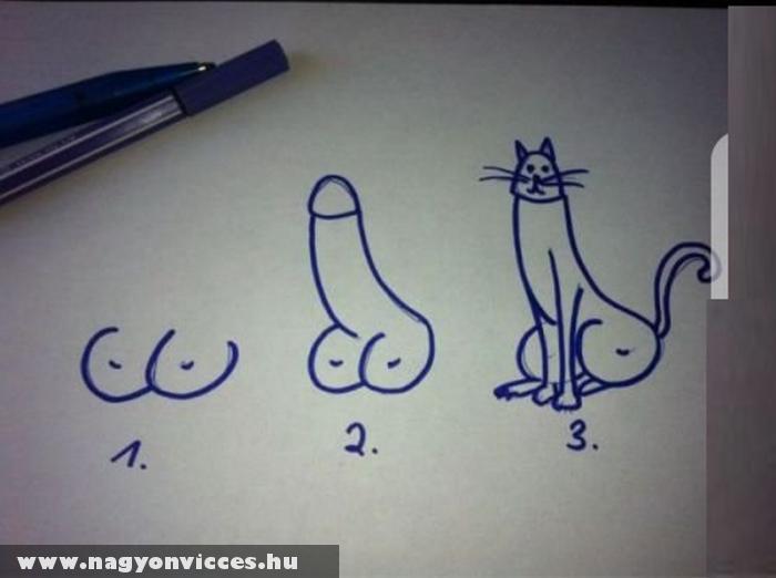 Cici, dákó, cica rajzolása 3 lépésben!