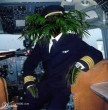 palm-pilót