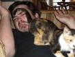 Ajándék a cicától
