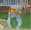 Halloweeni madárijesztő