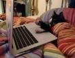 Internetező macska