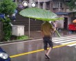 Kreatív esernyő