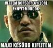 Borsó