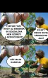 Szóviccek