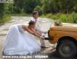 Zaporozsec és az ifjú pár