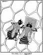 Tanácstalan méhek