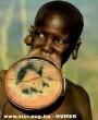 Afrikai csodabogár