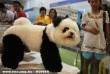 Panda séró