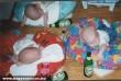Piás babák