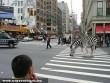 Zebra a zebrán