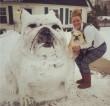 Bulldog Hóember
