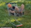 Pihenés bevásárlókocsiban