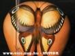 Éjszakai pillangó