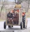 Így utazzunk többen traktoron