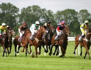 Fogadás a lóversenyen