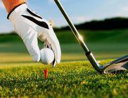 A feleségek és a golf